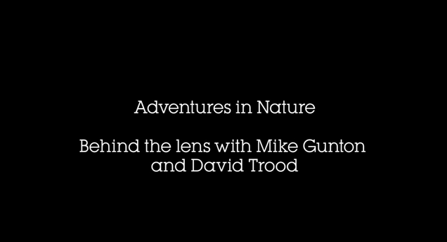 Adventures in Nature: Behind the lens with Mike…